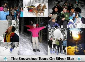 Snowshoe Tours On Silver Star
